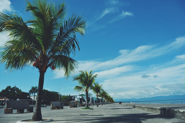 Palm trees line Dipolog Boulevard, where locals converge and do various activities in the afternoon.